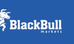 Programa de afiliados BlackBull Affiliates